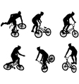 stunt bicyclists vector image vector image