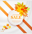advertising discount banner with fallen leaves