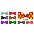 bow tie men suit for office uniform vector image