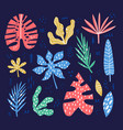 exotic tropical leaves hand drawn vector image vector image