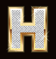 H bling bling vector | Price: 1 Credit (USD $1)