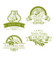 olive oil product template icons set vector image vector image