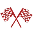 rally flags isolated icon vector image