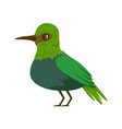 small bright green tropical bird colorful vector image vector image