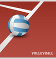 volleyball poster with ball on playground template vector image