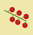 Cherry Tomato Icon vector image vector image