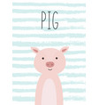 cute cartoon pig poster card vector image vector image
