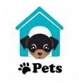 dog pets house icon vector image vector image