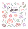 hello spring floral design elements vector image vector image
