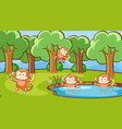 scene with cute monkeys in forest vector image vector image