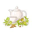 apricot tea in teapot llustration vector image