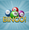 bingo or lottery number balls set colorful vector image