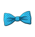 blue bow tie with print a polka dots vector image vector image