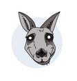 hypnotic kangaroo face vector image