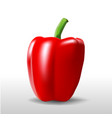 one red pepper vector image vector image