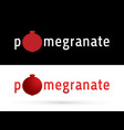 pomegranate fruit and font vector image