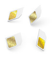 realistic sim cards vector image vector image