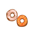 two fresh glazed donuts cartoon vector image
