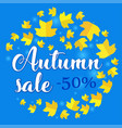 autumn sale banner with fall leaves on blue vector image