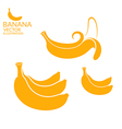 Banana Set vector image