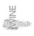 best wine storage practices text word cloud vector image vector image