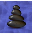Blue Polygonal Spa Background with Stones vector image