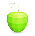 Geometric Green Apple vector image