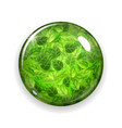Glass button or sphere with green leaves vector image vector image