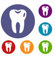 tooth icons set vector image vector image