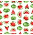 Watercolor watermelon pattern vector image