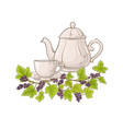 black currant tea vector image vector image