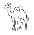 Cartoon of cute camel outlined