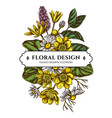floral bouquet design with colored celandine vector image vector image