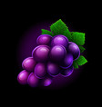 grapes icon isolated on black background vector image vector image