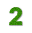 grass number 2 green 3d number two isolated on vector image vector image