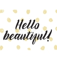 Hello beautiful romantic inscription Greeting vector image vector image