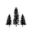 tree pine logo silhouette vector image vector image