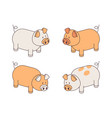 fun outline pigs variation isolated on white vector image