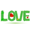 love of green leaves vector image vector image