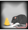 Rat and Cheese vector image