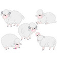 set cute cartoon sheep vector image vector image