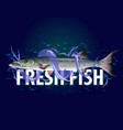fresh fish with waves for banners vector image