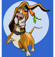 cartoon funny dog Basset Hound with carrot vector image
