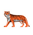 bengal tiger full body mascot vector image