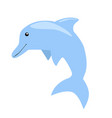 blue dolphin vector image