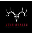deer skull design template vector image vector image