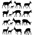 pronghorn silhouettes vector image vector image