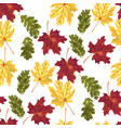 seamless pattern with autumn leaves in vector image vector image