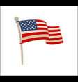 usa national flag icon colorful banner vector image