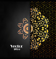 abstract luxury background ornament elegant vector image vector image